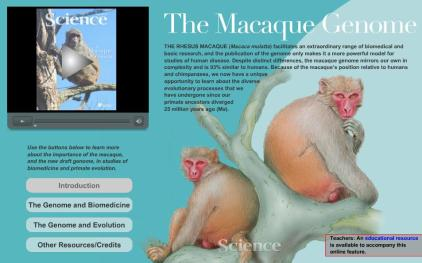 Macque Special Feature