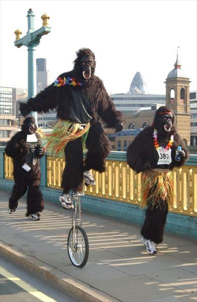 Great Gorilla Run