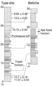 Suwa, et al. 2007 - Stratigraphy