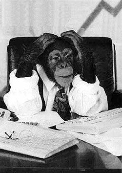 chimp-in-office.jpg