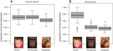 Herrmann et al., 2007 - Figure 1