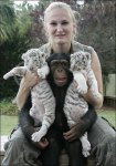 Anjana The Chimpanzee and Two White Tigers, Mitra & Shiva