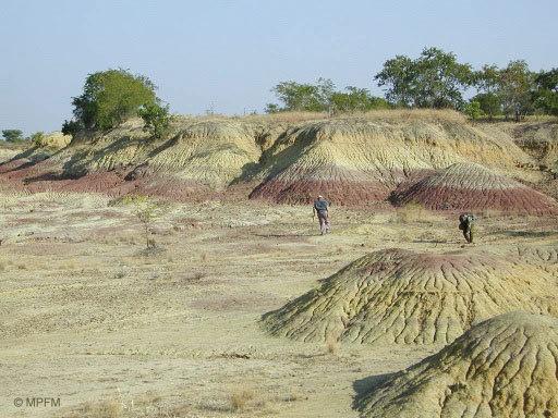 Pondaung sediment